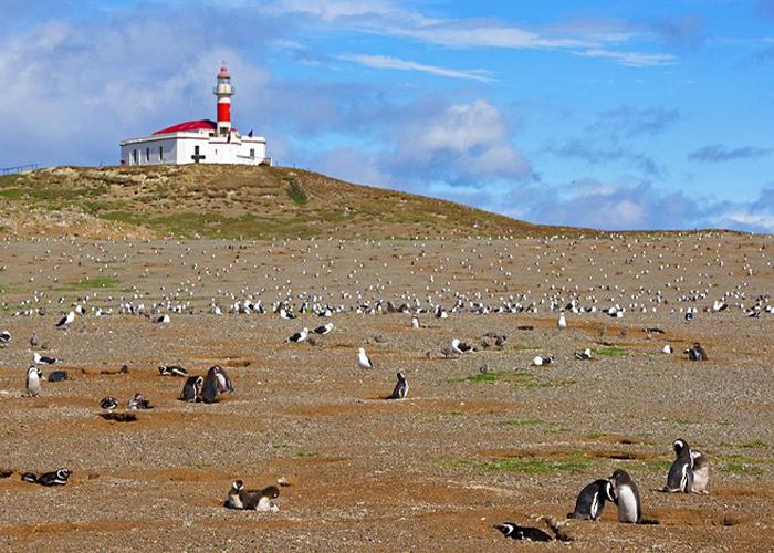 Monument naturel de Los Pingüinos
